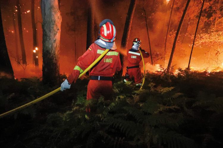 Bomberos en un incendio forestal.