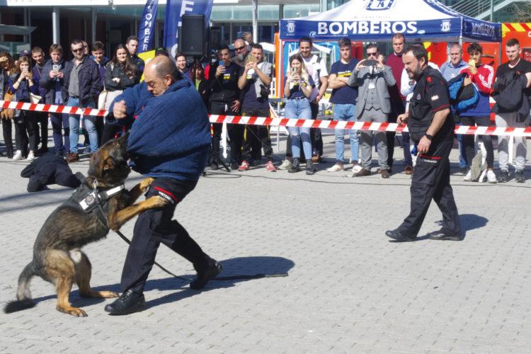 La Ertzaintza y su unidad canina mostraron cómo localizan explosivos, drogas, dinero y personas desaparecidas.
