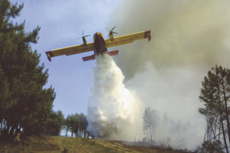 avioneta, agua, fuego, incendios forestales