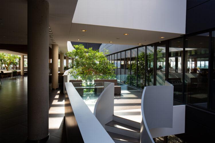 Diseño biofílico en los espacios de trabajo_Actiu_1
