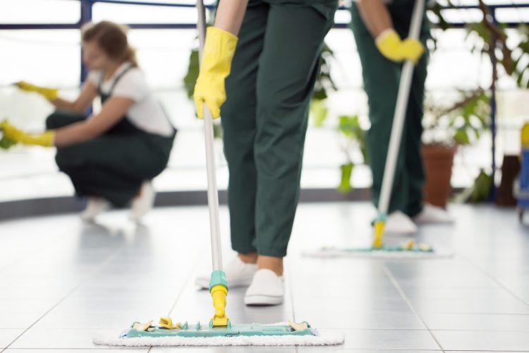 dia internacional de la mujer Limpieza